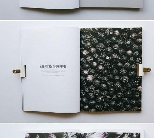 portfolio tasarımları