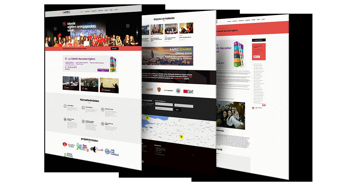 apec proje eğitim danışmanlık web site tasarımı